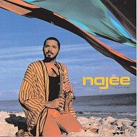 Najee – Najee's Theme
