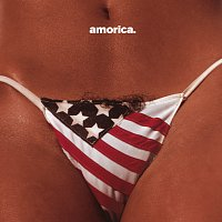 The Black Crowes – Amorica.
