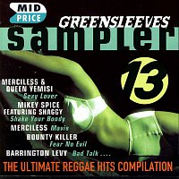 Various Artists.. – Sampler 13