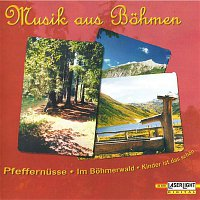 Various Artists.. – Musik aus Bohmen