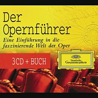 The Yellow Guide To Opera [3 CDs]