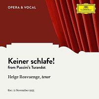 Helge Rosvaenge, Mitglieder Der Staatskapelle Berlin, Franz Alfred Schmidt – Puccini: Keiner Schlafe!