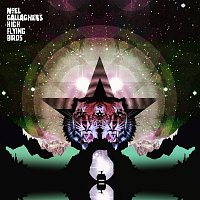 Noel Gallagher's High Flying Birds – Rattling Rose