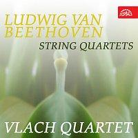 Vlachovo kvarteto – Beethoven: Smyčcové kvartety