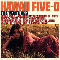 The Ventures – Hawaii Five-O