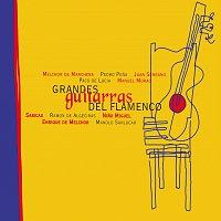 Různí interpreti – Grandes Guitarristas Del Flamenco