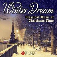 Stuttgart Radio Symphony Orchestra, García Navarro – Winter Dream - Classical Music at Christmas Time