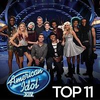 Různí interpreti – American Idol Top 11 Season 14