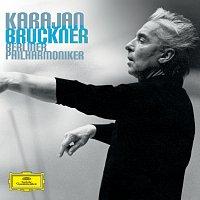 Přední strana obalu CD Bruckner: 9 Symphonies