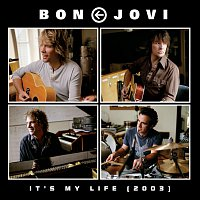 Bon Jovi – It's My Life (2003)