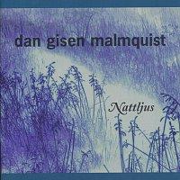 Dan Gisen Malmquist – Nattljus