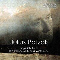 Julius Patzak, Michael Raucheisen, Jorg Demus – Patzak singt Schubert
