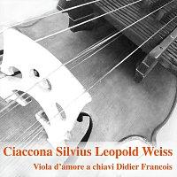Didier Francois – Ciaccona