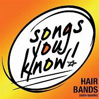 Damn Yankees – Songs You Know - Hair Bands [Mini-Bundle]