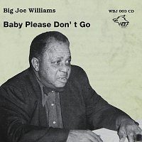 Big Joe Williams – Big Joe Williams - Baby Please Don´t Go