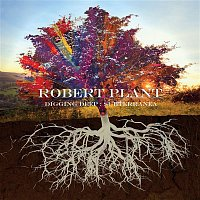 Robert Plant – Too Much Alike (with Patty Griffin)