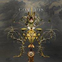 Joep Beving – Conatus