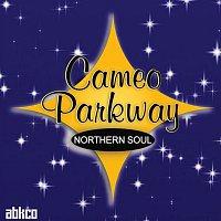Různí interpreti – Original Northern Soul Hits From Cameo Parkway
