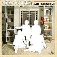 Albert Hammond Jr – ?Como Te Llama?