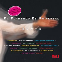 Různí interpreti – El Flamenco Es Universal Vol.1