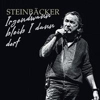 Gert Steinbacker – Irgendwann bleib I dann dort [Live]