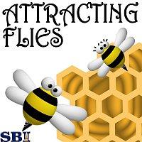 Beez & Honey – Attracting Flies