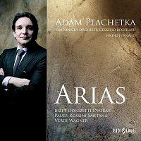 Adam Plachetka – Árie