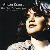 Přední strana obalu CD Now That I've Found You: A Collection