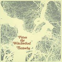 Přední strana obalu CD From The Witchwood