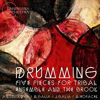 Tinnitrana Orchestra – Drumming Five Pieces for Tribal Ensemble and the Brook