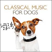 Různí interpreti – Classical Music For Dogs
