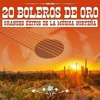 Los Relampagos del Norte, Pedro Yerena & Cornelio Reyna – 20 Boleros de Oro: Grandes Éxitos de la Música Nortena