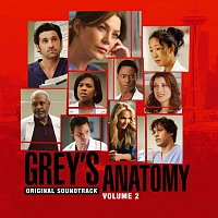 Různí interpreti – Grey's Anatomy Volume 2 Original Soundtrack