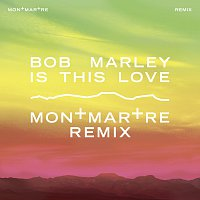Bob Marley – Is This Love [Montmartre Remix]