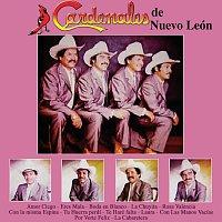 Cardenales De Nuevo León – Amor Ciego