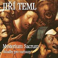 Jiří Teml – Mysterium sacrum