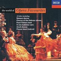 Přední strana obalu CD The World of Opera Favourites