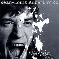 Jean-Louis Aubert – platre et ciment