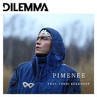 Přední strana obalu CD Pimenee (feat. Terhi Kokkonen)