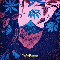 Lorde – Te Ao M?rama