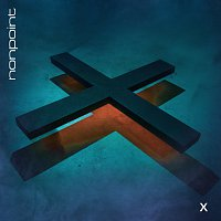Nonpoint – X
