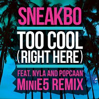Sneakbo, Nyla, Popcaan – Too Cool (Right Here) [MiniE5 Remix]