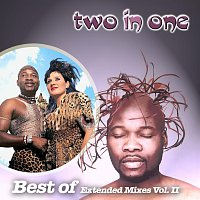 TWO IN ONE – Best Of Extended Mixes Vol. 2