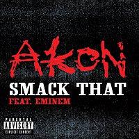 Akon, Eminem – Smack That [Explicit Version]