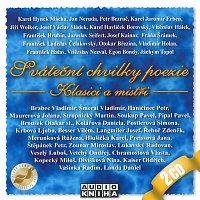 Různí interpreti – Sváteční chvilky poezie - Klasici a mistři – CD