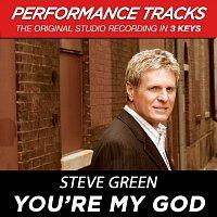 Steve Green – You're My God [Performance Tracks]