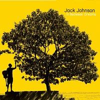 Jack Johnson – In Between Dreams