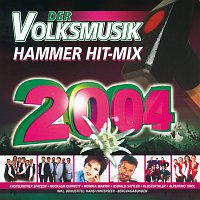 Různí interpreti – Der Volksmusik Hammer Hit-Mix 2004