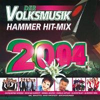 Různí interpreti – Der Volksmusik Hammer Hit-Mix 2004