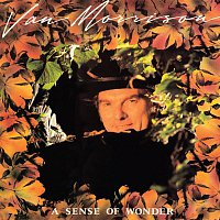 Van Morrison – A Sense of Wonder